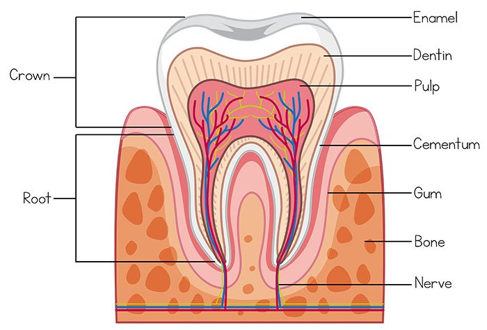 sensitive teeth treatment north lakes and mango hill