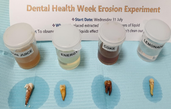13-8-19 two weeks after commencement of experiment