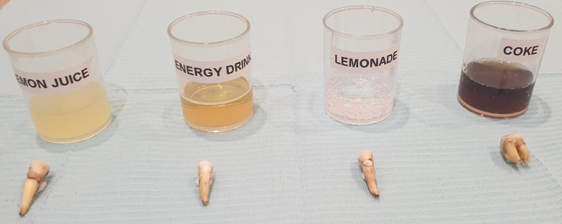 31-7-19 commencement of experiment
